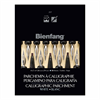 Bienfang Calligraphic Parchment 207 White 8.5x11