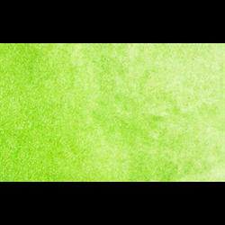 Stoneground Watercolour Half Pan Ivy Green **ND**