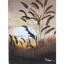 //Full - 5 session POST Beginner Watercolors with Tom Chan, Jan. 23 - Feb. 6