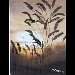 //Full - 5 session POST Beginner Watercolors with Tom Chan, Jan. 23 - Feb. 6