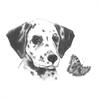 Royal & Langnickel Mini Sketching Made Easy Dalmatian Pup