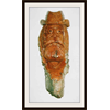Additional images for Bark & Woodcarving with Peter Symchuk, March 1st