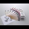 Spectrum Graphite Pencil Assorted set of 12