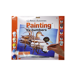 Royal & Langnickel Paint by Numbers Mallards
