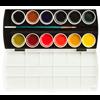 Richeson Watercolour Collegiate Semi-Moist Set 12